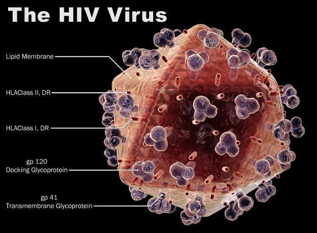 Penyakit HIV