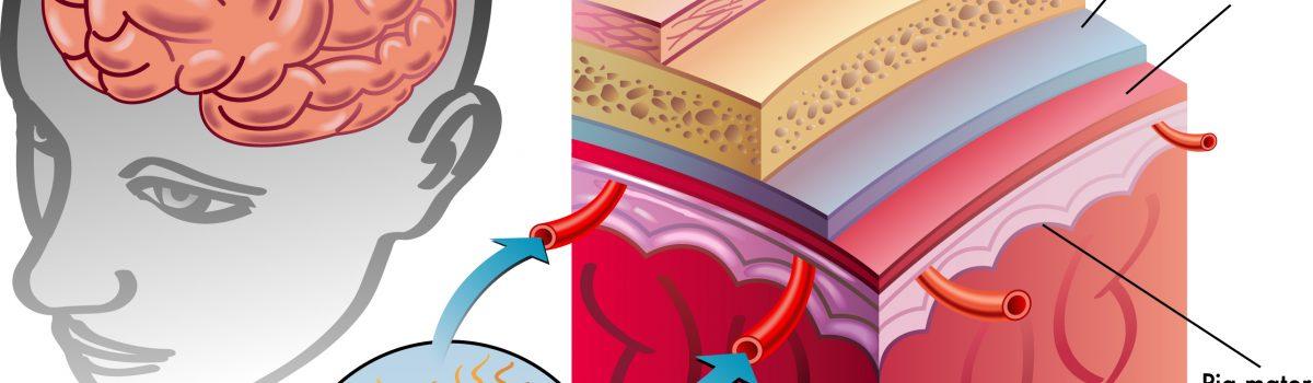 meningitis bakteri yang dapat disembuhkan