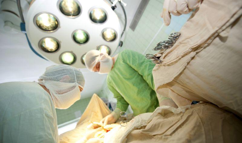 tindakan transplantasi
